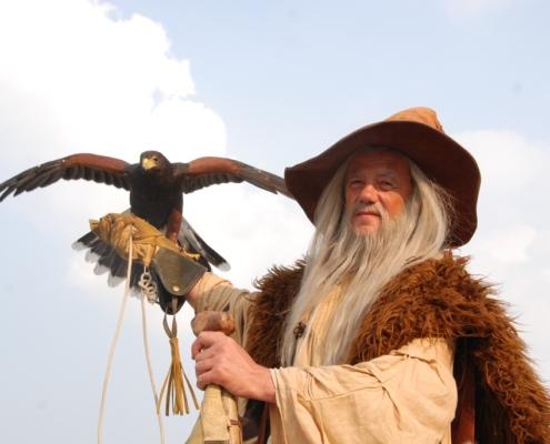 Merlin et son faucon